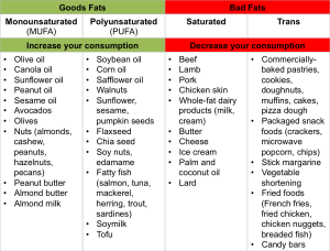 Good and Bad Fats